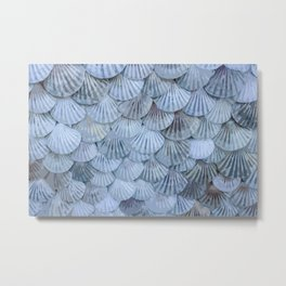 Elegant Seashells Metal Print