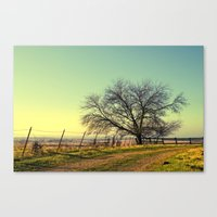 texas Canvas Prints featuring Texas by Ruby Del Angel