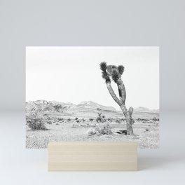Vintage Desert Scape B&W // Cactus Nature Summer Sun Landscape Black and White Photography Mini Art Print