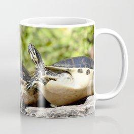 Watercolor Turtle, Eastern Painted Turtle 17, Merchants Millpond, North Carolina, Bumps on a Log Coffee Mug