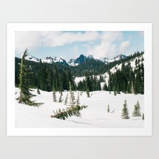 Mount Rainier National Park II Art Print