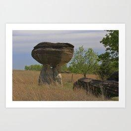 Kansas Mushroom State Park Art Print