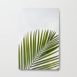 Palm white Green Metal Print