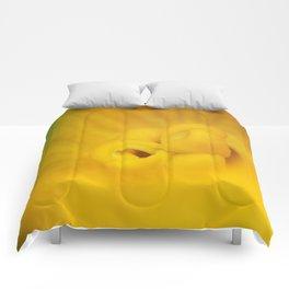 Zucchini Flower Comforters