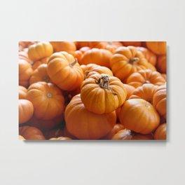 'Lil Pumpkins Metal Print