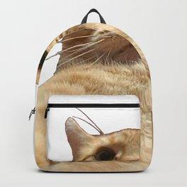 Cat Selfie Backpack