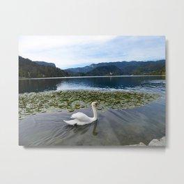 Swan on Lake Bled Metal Print