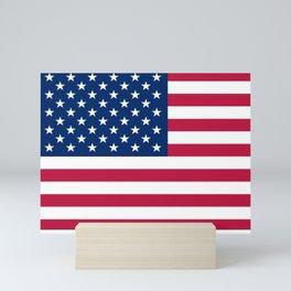 Flag of USA - American flag, flag of america, america, the stars and stripes,us, united states Mini Art Print