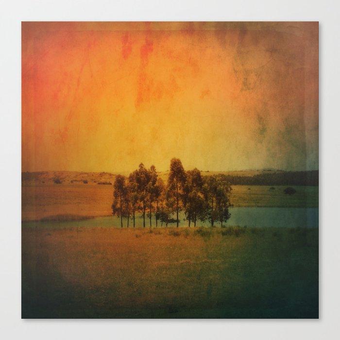 Solitude Colors Canvas Print