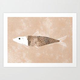 Fine Fish. Art Print