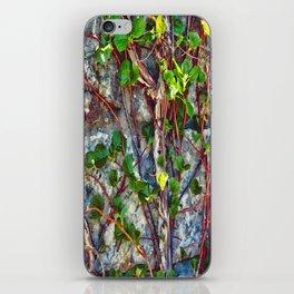Climbing Vines - Nature's Art Work iPhone Skin