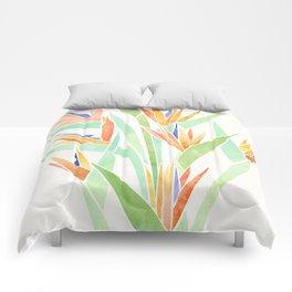 Birds of Paradise ~ tropical bouquet Comforters