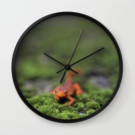 Coming For You - Orange Salamander Wall Clock