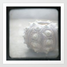 Lonely Urchin TTV Art Print