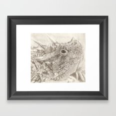 The Horned Lizard. Framed Art Print