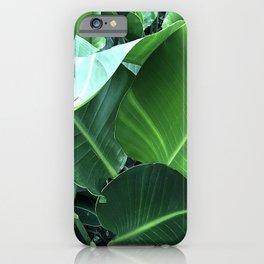 Lavish, Lush Banana Leaves Elegant Close-Up iPhone Case