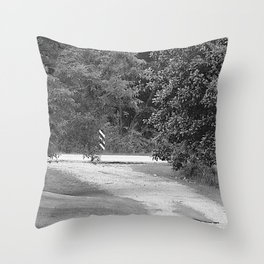 down the driveway Throw Pillow