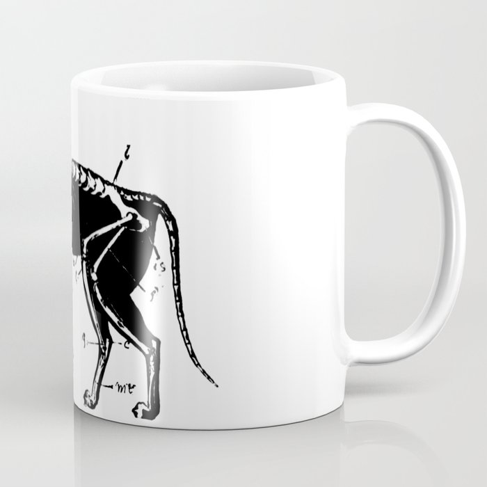 Cat Skeleton Anatomy Coffee Mug By Nineshirts Society6