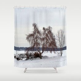 Weeping Willow on the Frozen Lake Shower Curtain