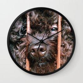 Where's My Master Wall Clock