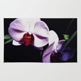 Purple Orchids Rug