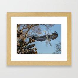 Free like the Wind Framed Art Print