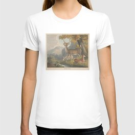Vintage Illustration of a White Tail Deer (1830) T-shirt
