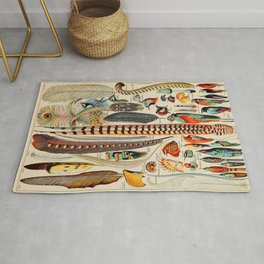 Feathers - flat from The Larousse, for all - new encyclopedic dictionary - 1909 Vintage Art Rug