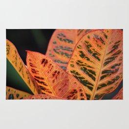 Orange Croton Leaves Rug