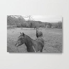 horsemud Metal Print