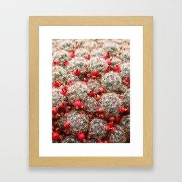 Berry Cactus  Framed Art Print