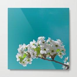 Spring Blossoms - IIIa Metal Print