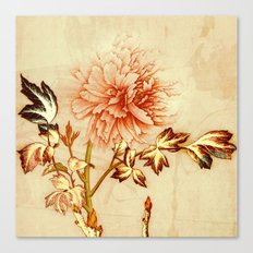 peach and golden floral Canvas Print