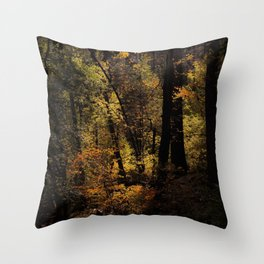 Autumn tree in the forest at Yosemite national park California USA Throw Pillow