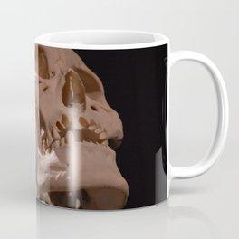 Real Human Skull Coffee Mug