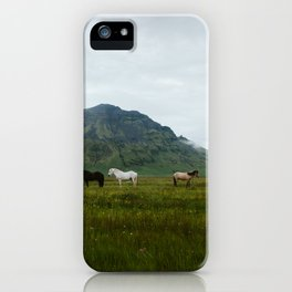 Icelandic Horses Posing for a Photo iPhone Case