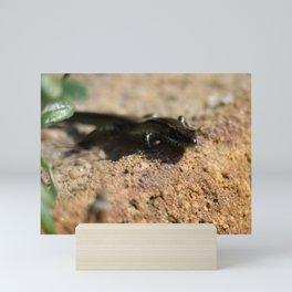 Glazing Mini Art Print