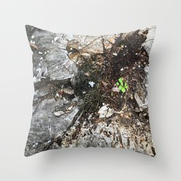 From the Earth Throw Pillow
