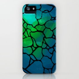 Turtle - Tortuga iPhone Case