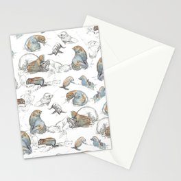sketch of New zealand seals Stationery Cards