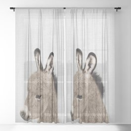 Donkey - Colorful Sheer Curtain
