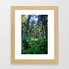Mossy Heights Framed Art Print
