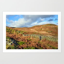 Open the gate to the fells Art Print