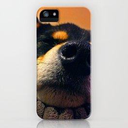 Kuma Close-up iPhone Case