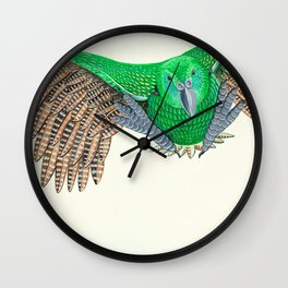 Kakapo in flight Wall Clock