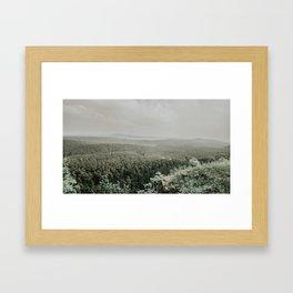 Fairytale Forest, Germany Framed Art Print