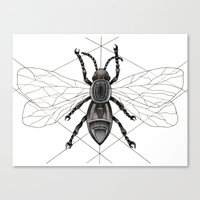insect Canvas Prints featuring insect by silb_ck