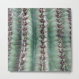 Cactus Abstractus Metal Print