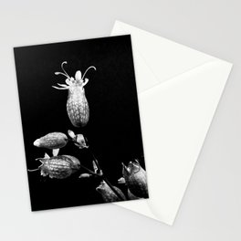 Strange Kind of Beautiful Stationery Cards