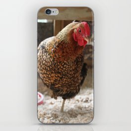 Golden Laced Wyandotte Hen iPhone Skin